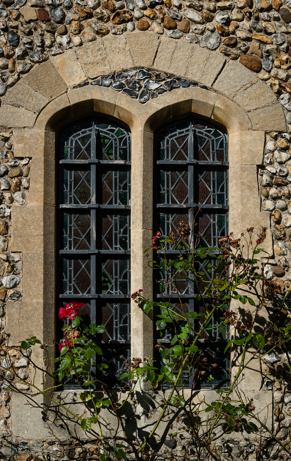 Windows and Roses