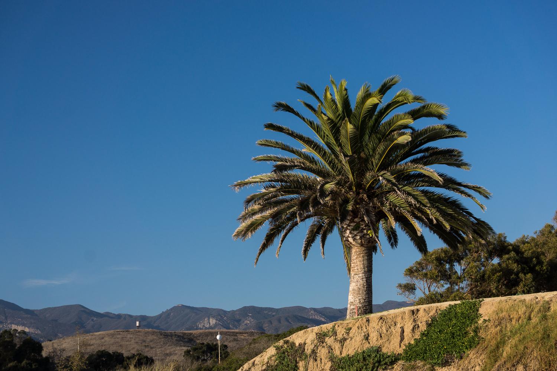 43-365v3-a-californian-landscape