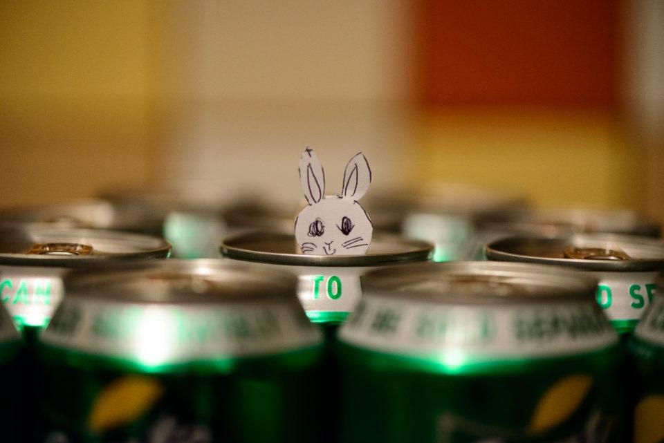 Peak-a-boo Bunny