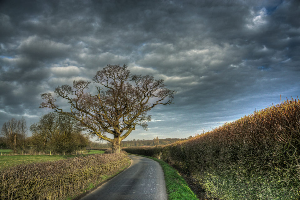 Stormy Clouds Await