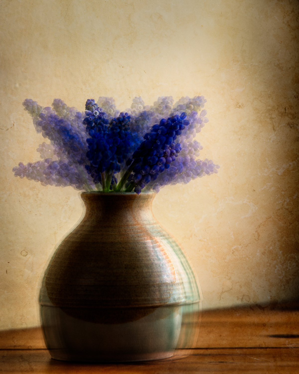 A Vase of Muscari