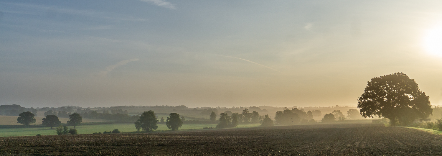 Mist over the Dunmow Countryside
