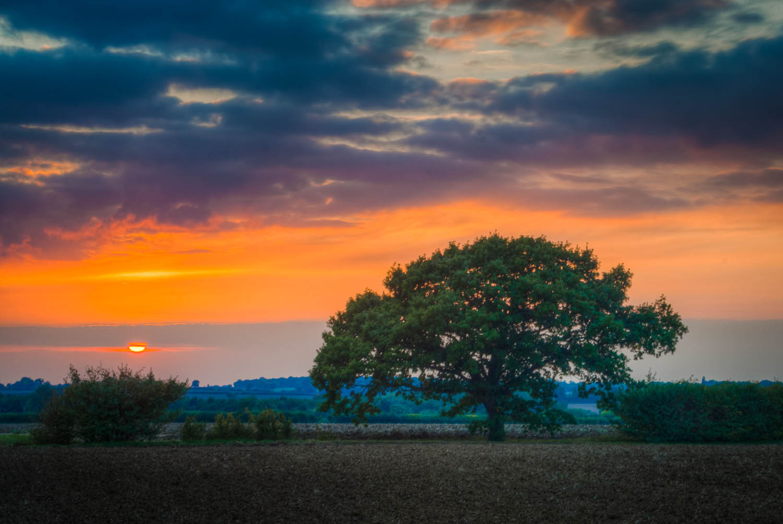 Sunset at Aythorpe Roding