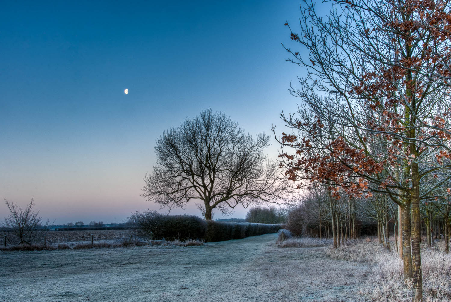 Aythorpe Roding Farmtrack Dawn