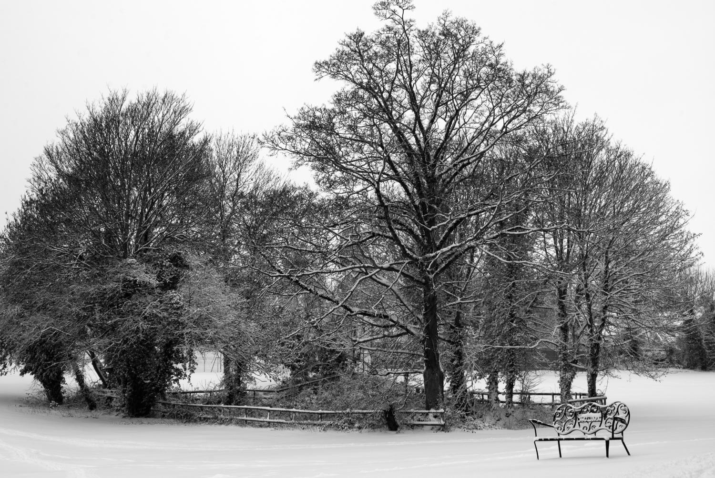 Not Quite Doctors Pond, Great Dunmow, Essex