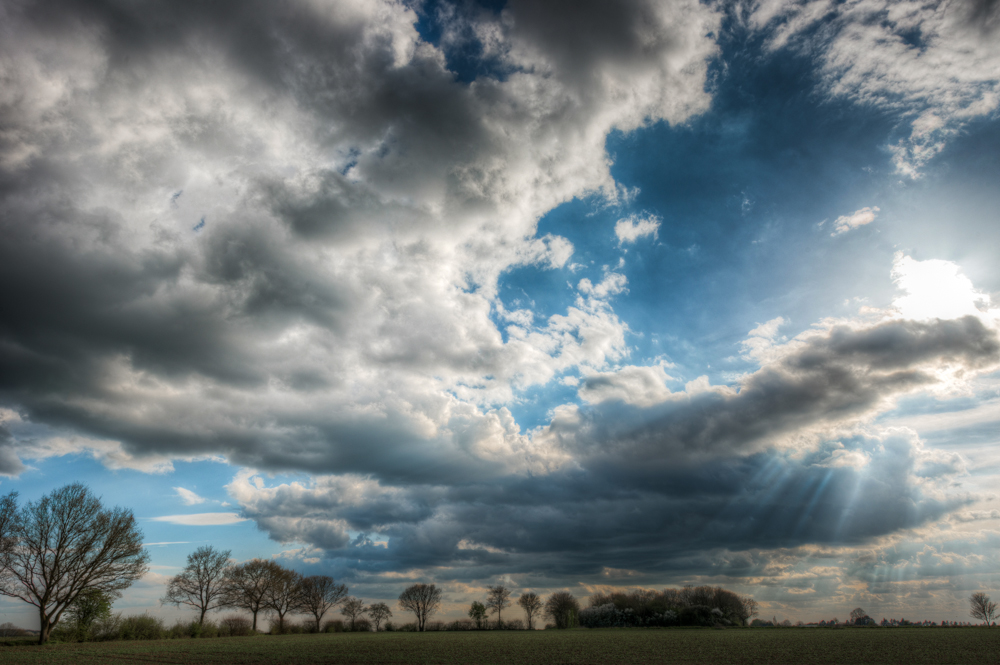 Sun over Rowney Woods