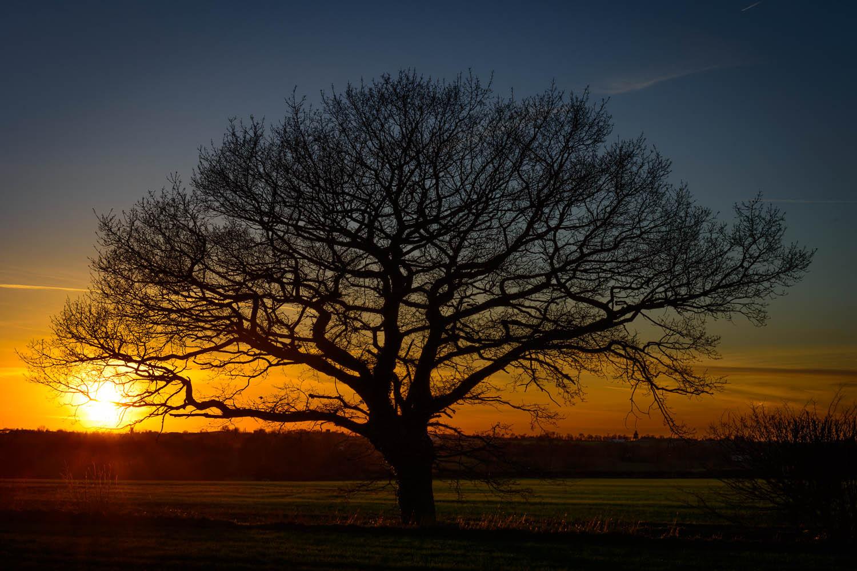 An Essex Sunset at Aythorpe Roding