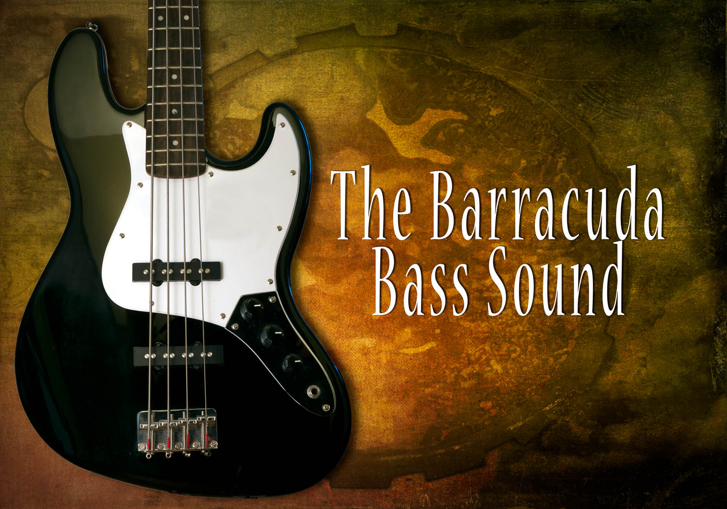 The Barracuda Bass Sound