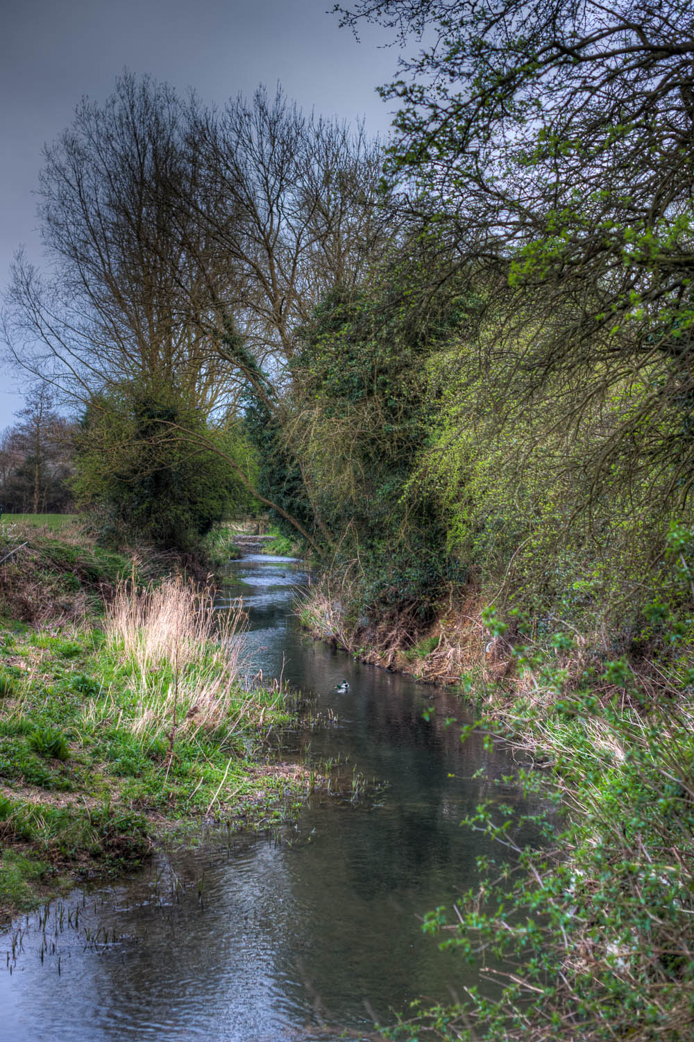 The River Stort, Dunmow, Essex