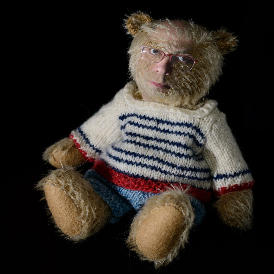 I'm Just A Teddy Bear Really