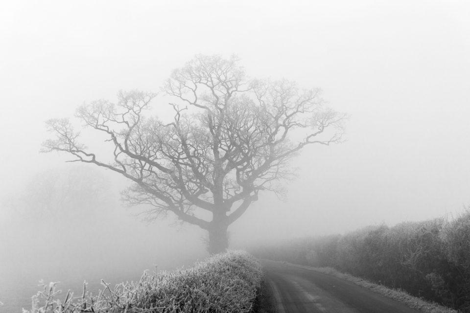 Freezing Fog
