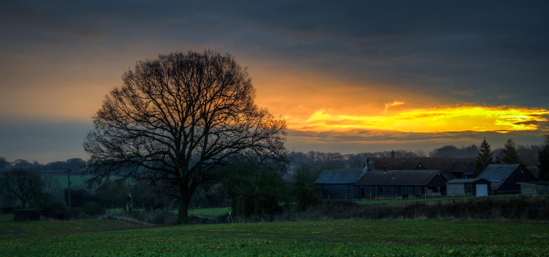 A Brief Sunrise