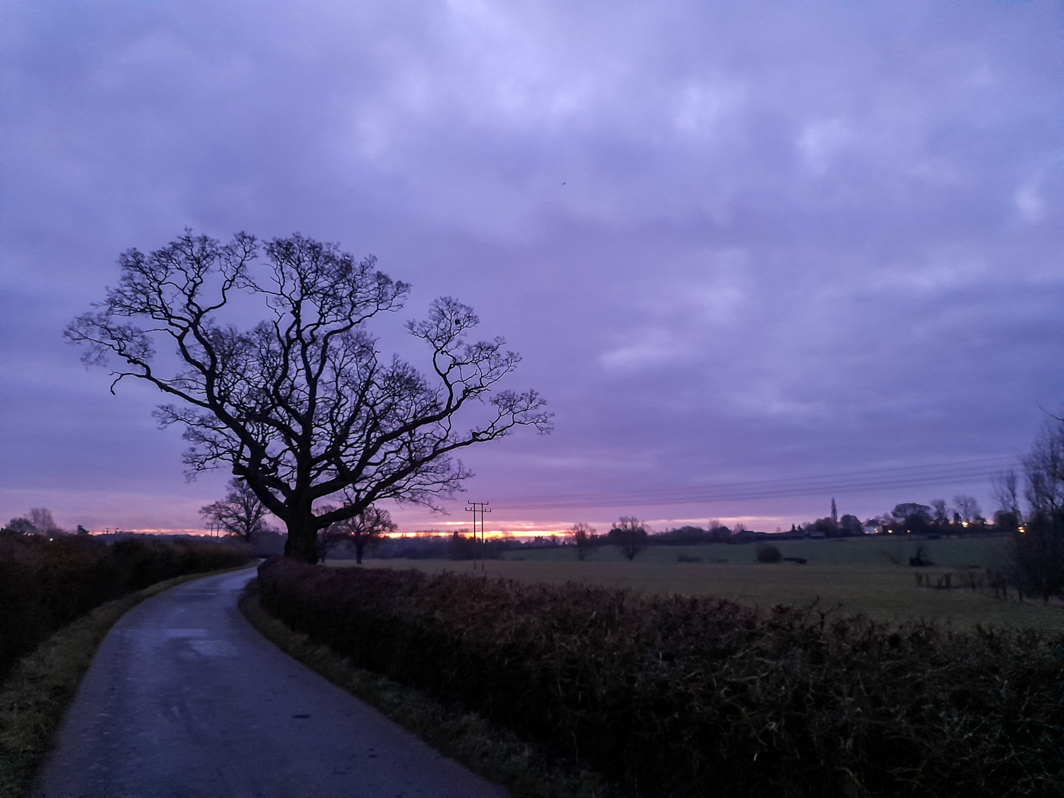Dawn on Bigods Lane, Great Dunmow