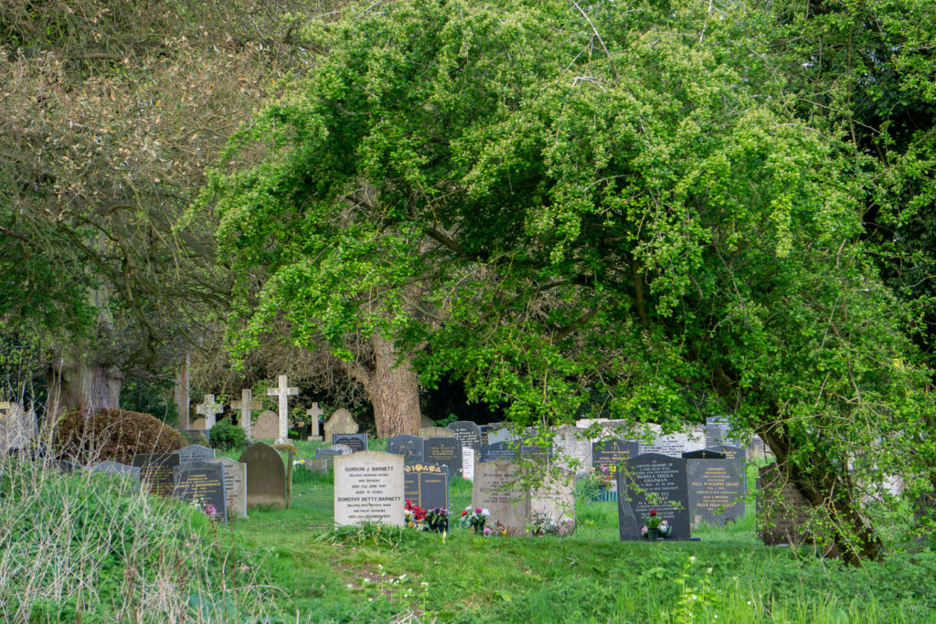 Overarching the Graveyard
